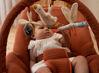 Bild von Kinderwippe rust