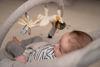 Bild von Kinderwippe grau