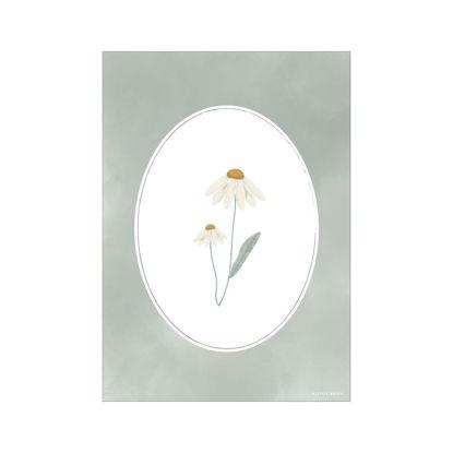 Bild von Poster Wild Flowers